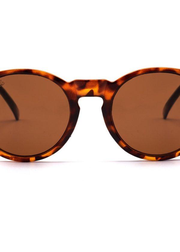 Gafas TURTLE